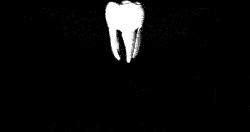 logo bitewing tandartspraktijk herent