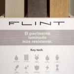 EXPOSITOR_FLINT_1