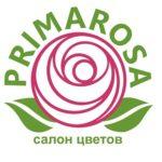 primarosa logo 3 kopija 150x150 - 101 красная роза 70 см