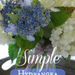 Simple Hydrangea Mason Jar Arrangements