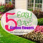Five Easy Care Garden Flowers