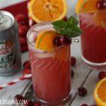 Cranberry Orange Fizzy