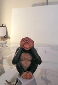 Art Monkey at A.D. Cook art studio, Las Vegas, NV