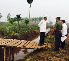 Presiden Jokowi saat meninjau lokasi kebakaran huta di Desa Rimbo Panjang Kecamatan Tambang Kabupaten Kampar, Riau, Jumat (9/10).