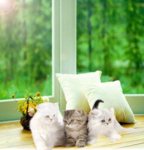 Ремонт окон - залог комфорта в Вашем доме