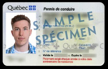 Spécimen de permis de conduire