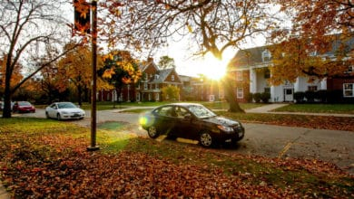Image of a street in autumn, with leaves on the ground, a parked car and some houses.