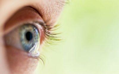 Le yoga des yeux : une source de grands bienfaits pour votre vision