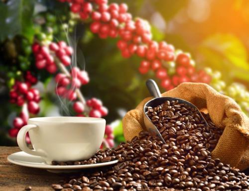 В России кофе подорожает на 40-50%