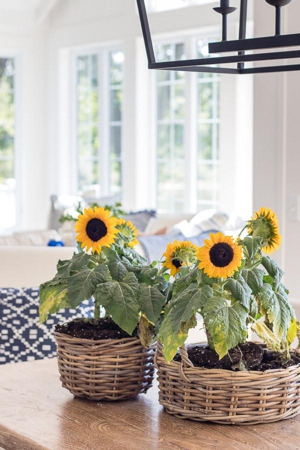 sunflower centerpiece fall dining room decor