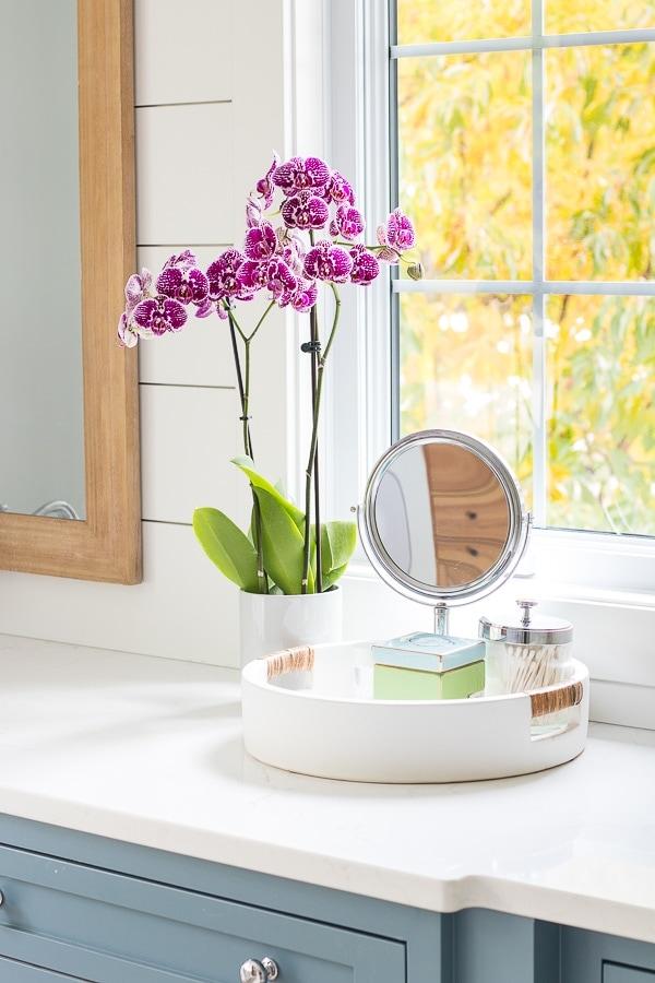 white bathroom counter tray