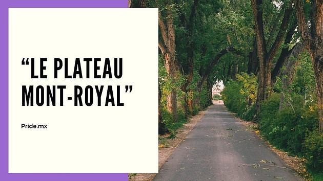 10 inolvidables experiencias para parejas en Montreal3