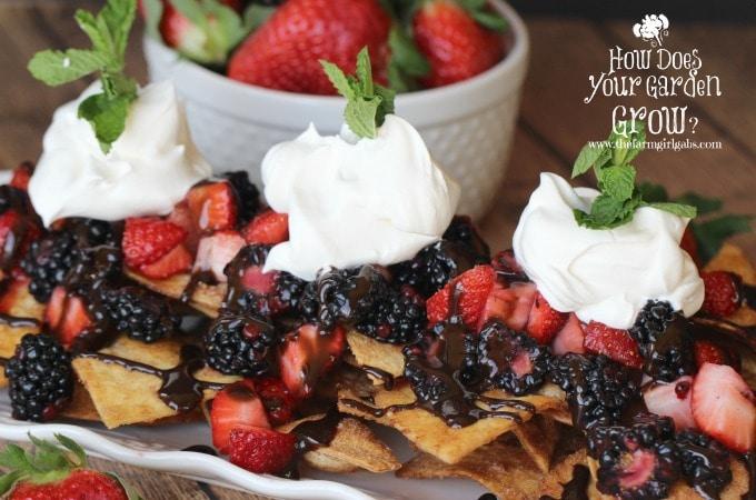 Very Berry Dessert Nachos- Close Shot