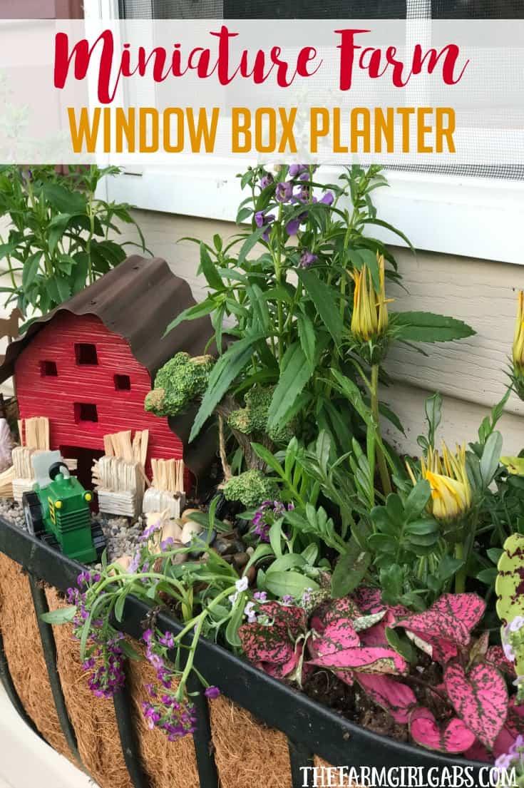 Brighten up your gardening landscape with this DIY Miniature Farm Window Box Planter idea. {Ad} #ForWhatMattersMost