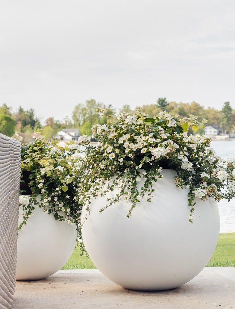 white sphere planters with white flowers