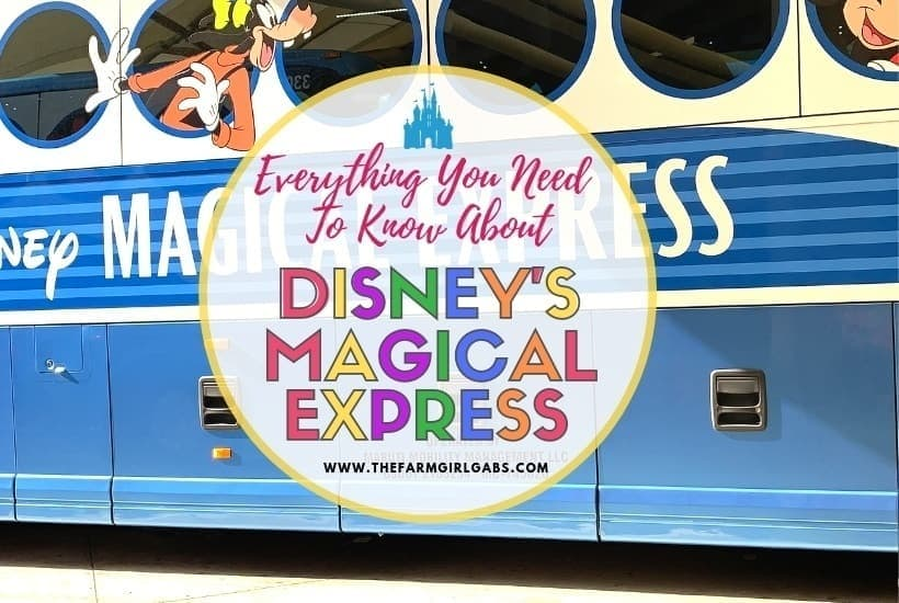 Everything You Need To Know About Disney's Magical Express