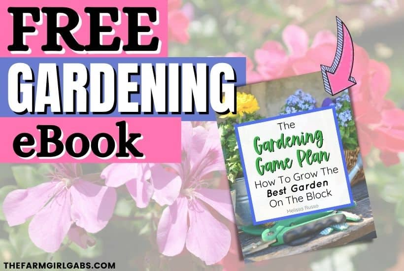 Learn how to grow the best garden on the block. Download this free gardening ebook full of gardening ideas. Whether you are planting a vegetable garden or flower garden, read these expert gardening tips from a pro that will help you plant your best backyard garden ever!