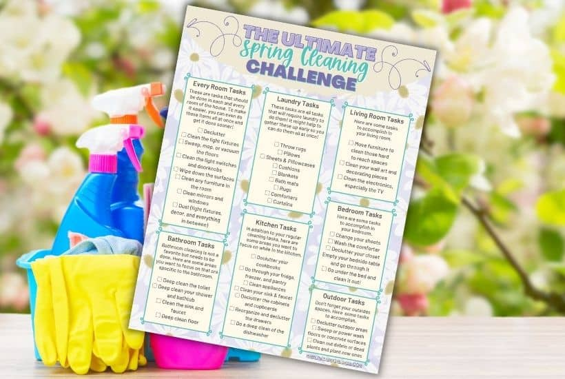 Spring Cleaning Challenge For Busy Moms
