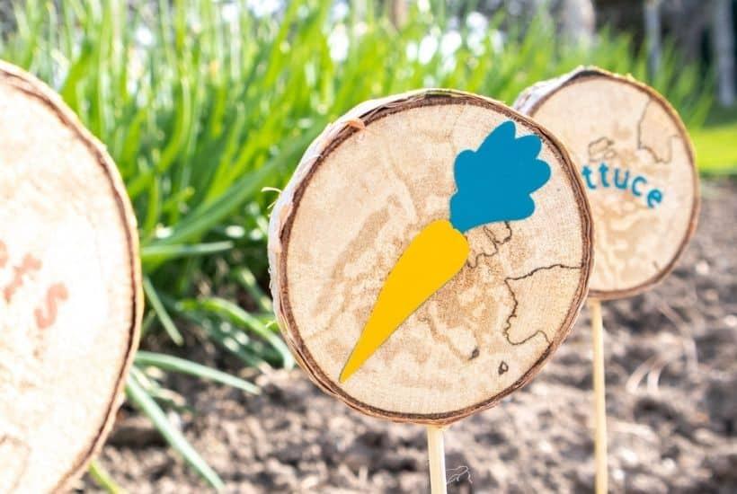 DIY Wood Slice Garden Markers