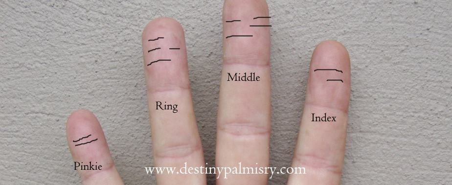 Lines On the Fingertips Meaning in Palmistry - Destiny Palmistry