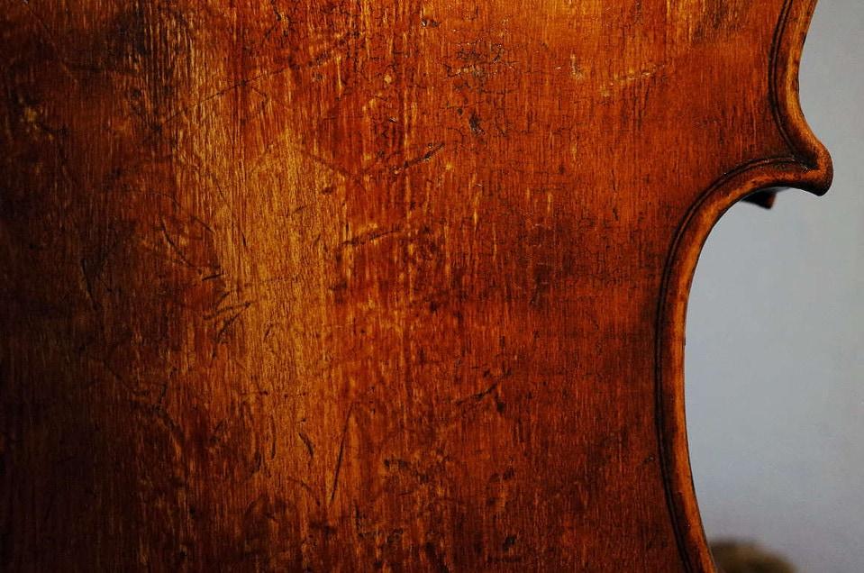 2014年製ポプラを使ったビオラの裏板中央から右上の部分