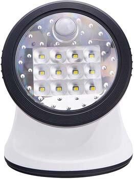 9. Light It! By Fulcrum, 12-LED Motion Sensor Security Light