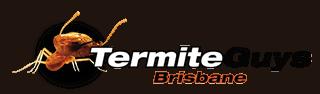 Contact Termite Guys Brisbane Today 0447 268 257