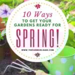 Spring is almost here. It's time to dust off those gardening gloves and tools! Check out these 10 Ways To Get Your Gardens Ready For Spring! Follow these helpful gardening tips for success in your garden. Whether you plant a vegetable garden or flower gardening, these spring planting tips will get you started on the right track. #springgardening #gardeningtips #gardeningideas #landscape #flowergarden #vegetablegarden