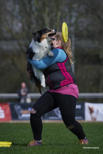 Frisbee Dog 7