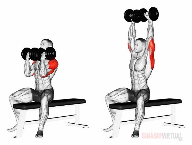 Arnold Fitnessstudio