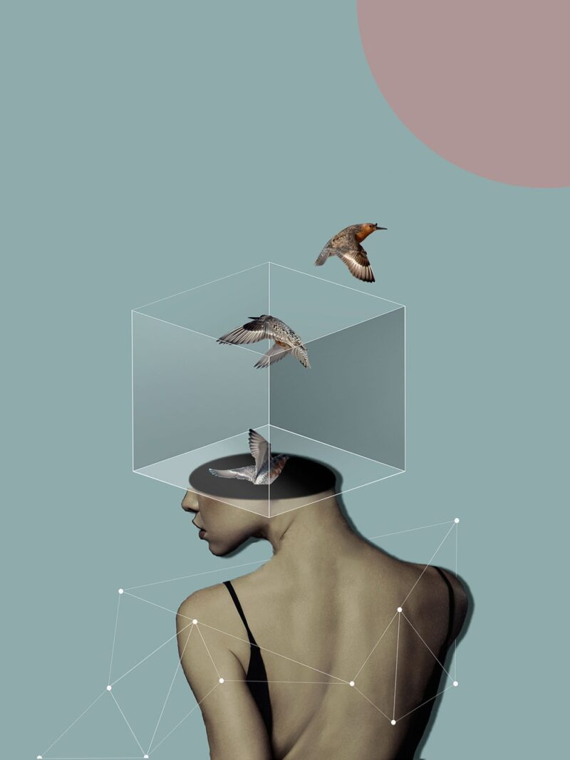 Surreal portrait of woman and birds