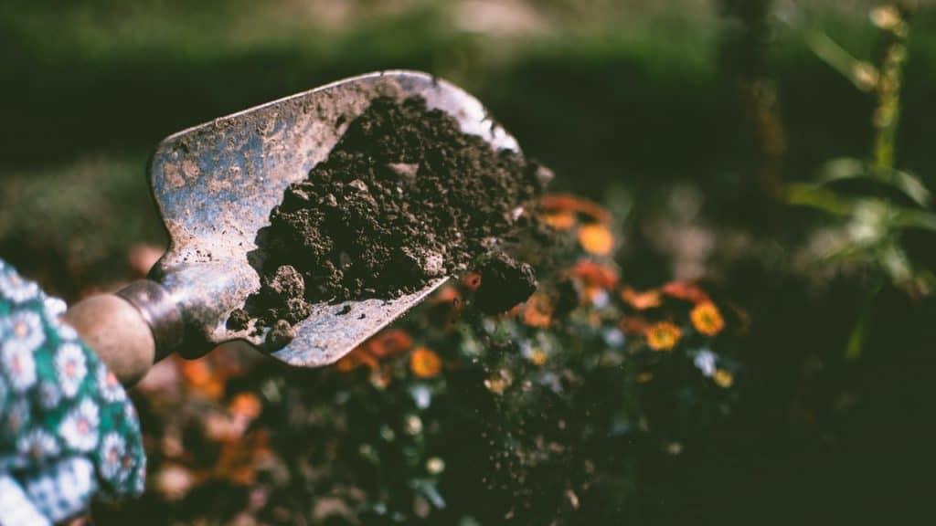 Garden Shovel