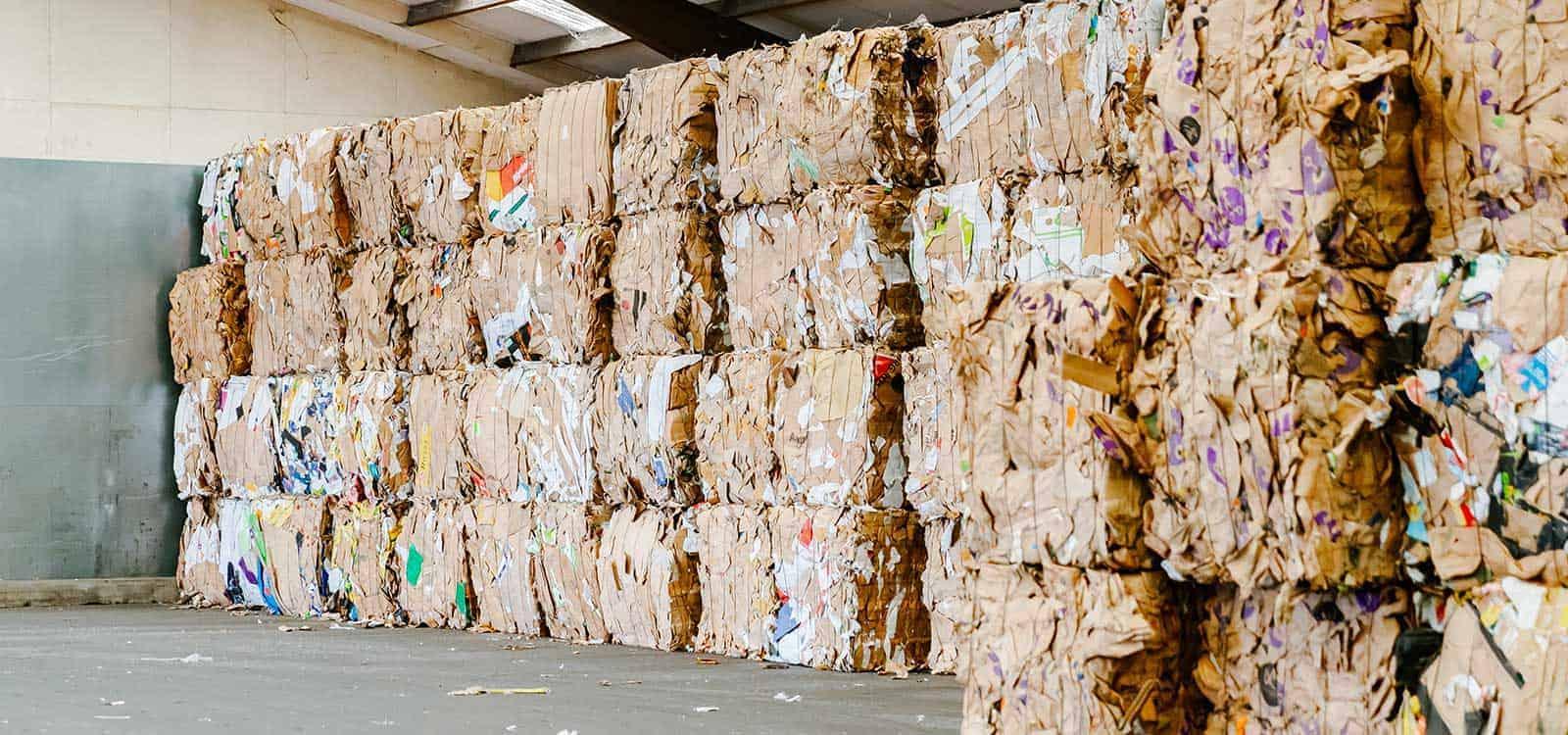 How-much-is-a-cardboard-bale-worth-header