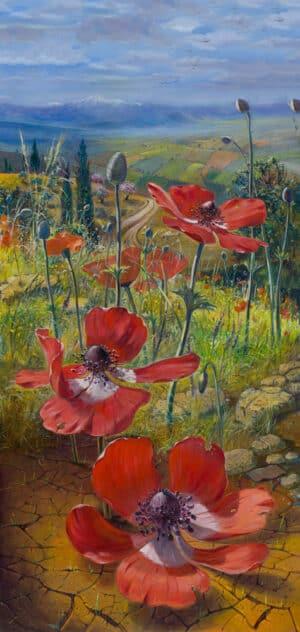 poppy flowers israel