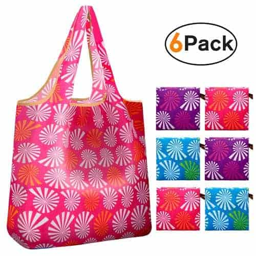 Reger-Foldable-Nylon-Light-Weight-Compact-Grocery-Shopping-Storage-Bags-Reusable