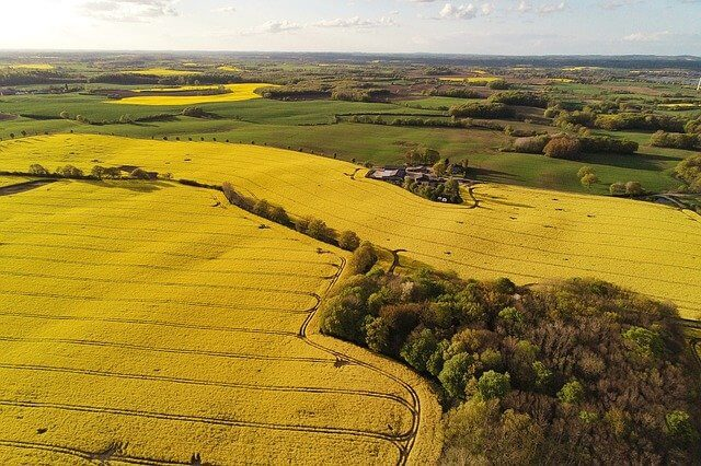 Yellow fields in the countryside from Bristol Drones aerial photography bristol