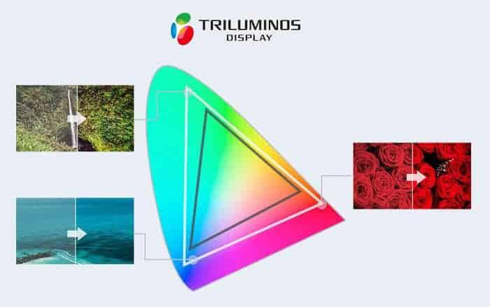 Sony pantalla Triluminos