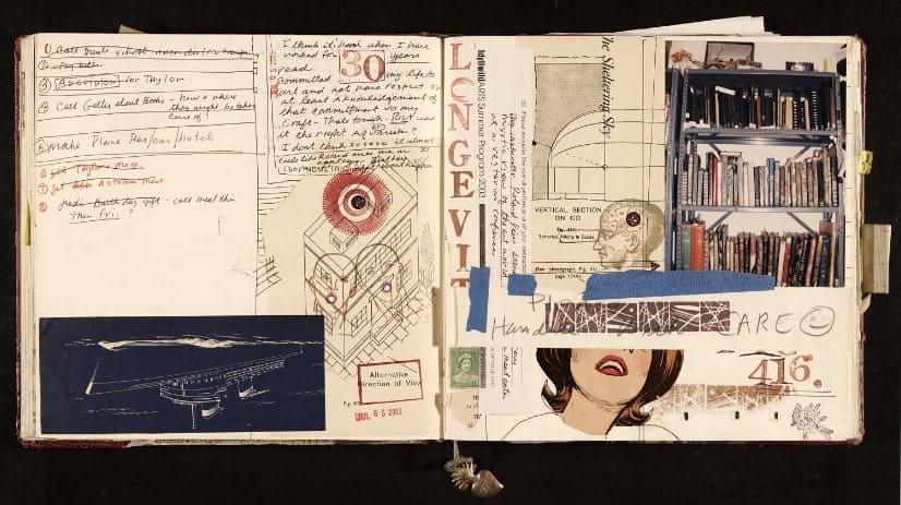 Janice Lowry diary