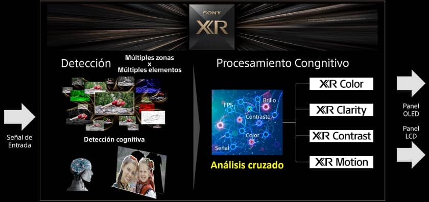 Procesador XR cognitivo TV Sony 2021