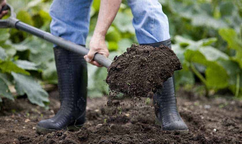 how-to-start-compost-pile
