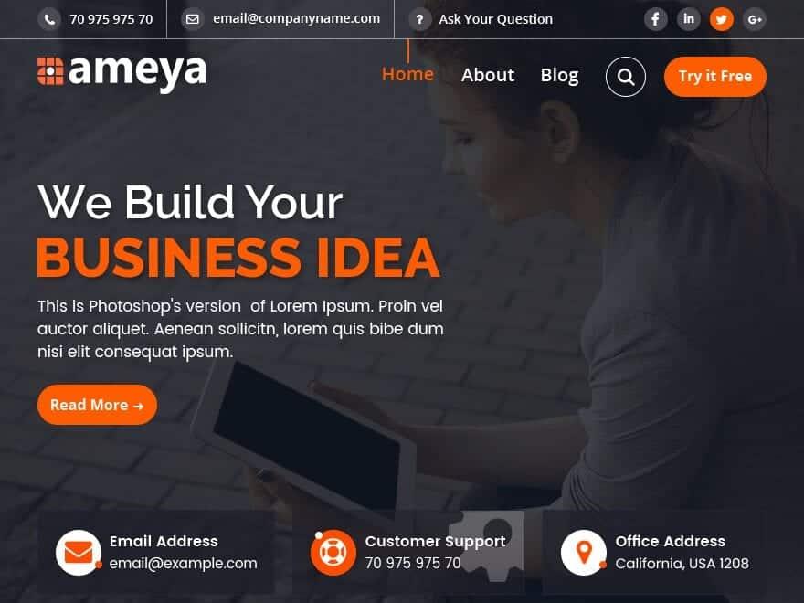 ameya wordpress theme
