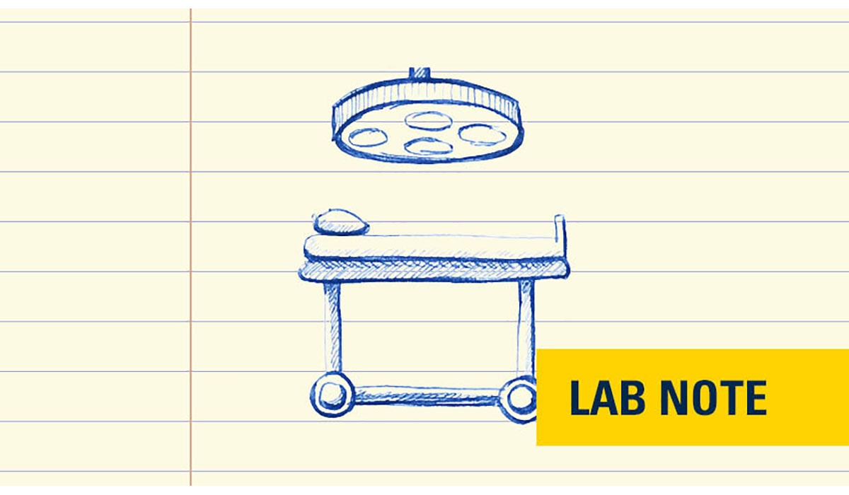 Lab Notes Or Surgery Badge Yellow Gatewayextension
