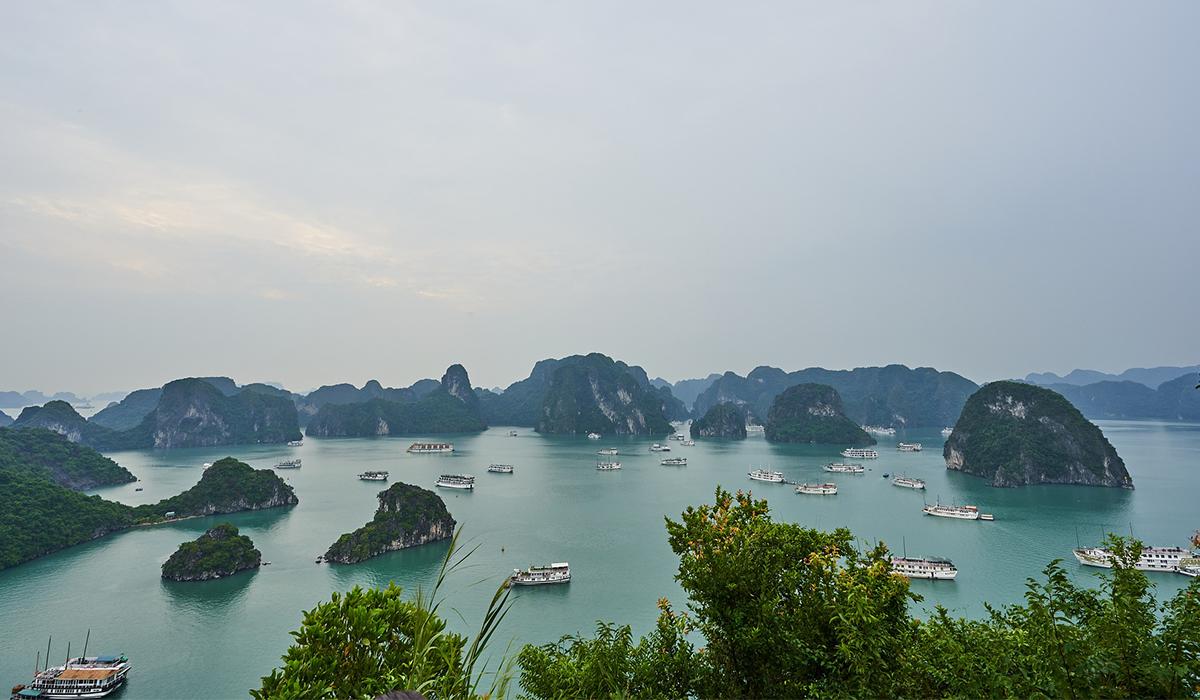 Vietnam 2021 Bschool Trip Image