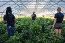 UM Campus Farm 2020 026
