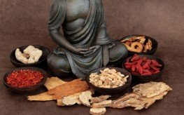 astragalus_chinese_healing_foods_ancient