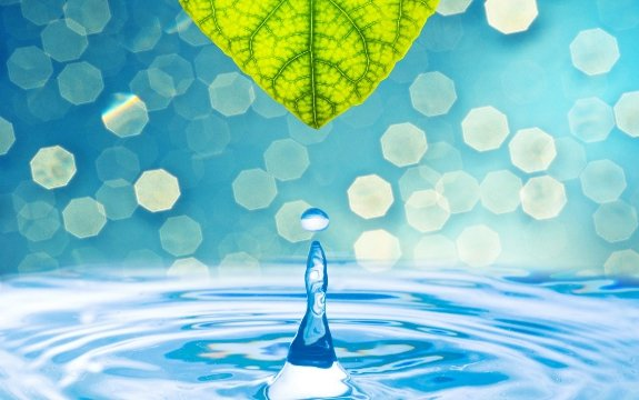 water with leaf