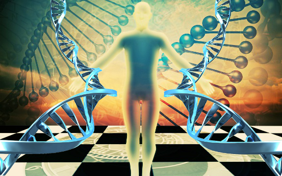 Beyond Deterministic Genes: The Morphogenetic Field