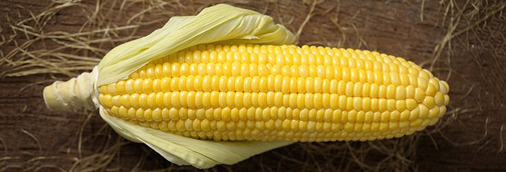 Top 10 Worst GMO Foods for Your GMO Foods List