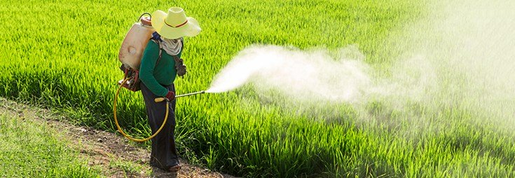 Pediatricians Target GMO Farms as Cause of Increased Birth Defects