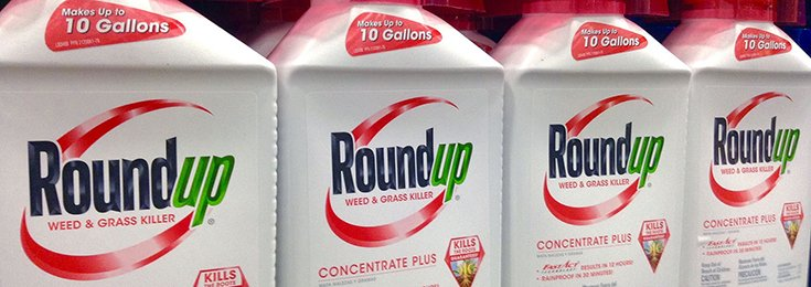 Global Ban on Glyphosate Called for by Portuguese Medical Association President